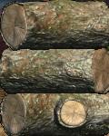 GB Fallen Logs